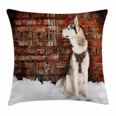 Alaskan Malamute Domestic Pet Square Pillow Cover Size: 24 x 24