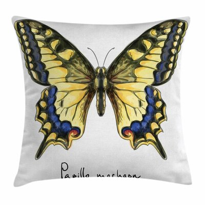 Swallowtail Fragile Square Cushion Pillow Cover Size: 16