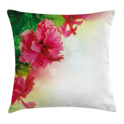 Exotic Hibiscus Blooms Square Pillow Cover Size: 24 x 24