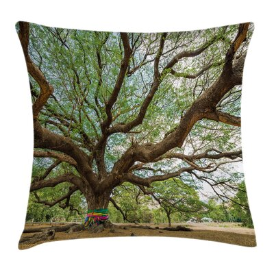 Big Rain Tree Thailand Square Pillow Cover Size: 16 x 16