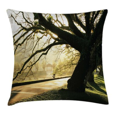 Tree Taiping Lake Gardens Woods Square Pillow Cover Size: 18 x 18