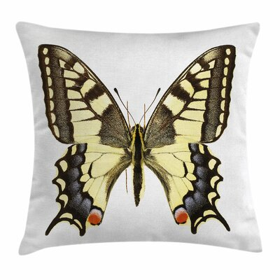 Wild Papilio Square Cushion Pillow Cover Size: 24 x 24