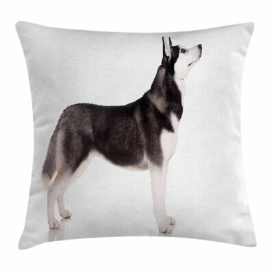 Alaskan Malamute Arctic Animal Square Pillow Cover Size: 20 x 20