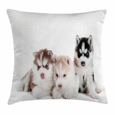 Puppy Friends Square Pillow Cover Size: 16 x 16