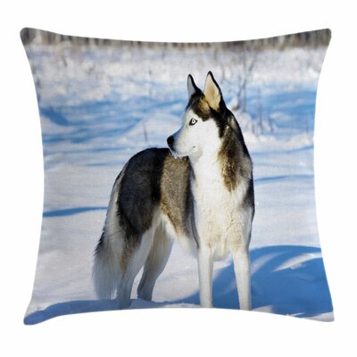 Husky on Snow Square Pillow Cover Size: 18 x 18