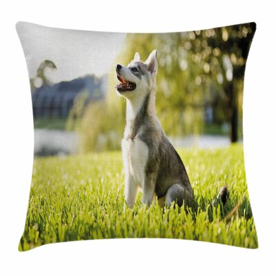 Alaskan Malamute Friendly Cute Square Pillow Cover Size: 18 x 18