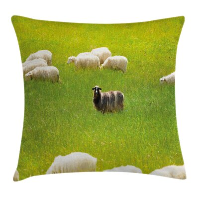 Sheep Goats Square Pillow Cover Size: 24 x 24