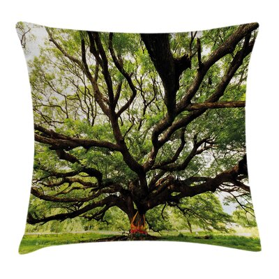 Big Tree Pillow Cover Size: 20 x 20