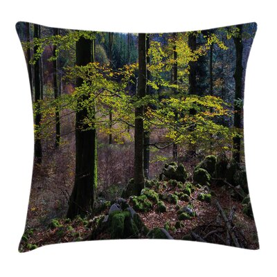 Forest Trees Autumn Wilderness Square Pillow Cover Size: 18 x 18