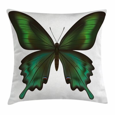 Swallowtail Exotic Creature Square Cushion Pillow Cover Size: 20 x 20