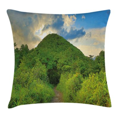 Mountain Path with Trees Square Pillow Cover Size: 16 x 16