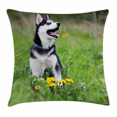 Puppy on Grass Square Pillow Cover Size: 20 x 20
