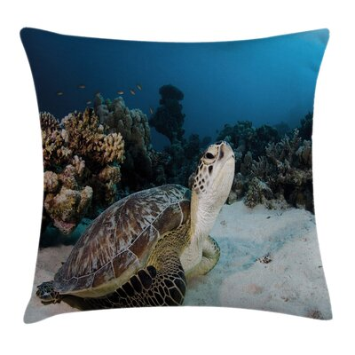 Turtle Coral Reef Square Pillow Cover Size: 24 x 24
