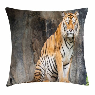 Zoo Bengal Tiger Cat Predator Square Pillow Cover Size: 16 x 16