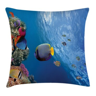 Ocean Life Underwater Fish Sea Square Pillow Cover Size: 16 x 16