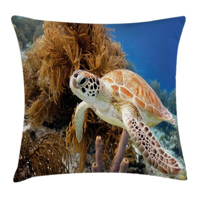Turtle Tropic Waters Coral Reef Square Pillow Cover Size: 24 x 24
