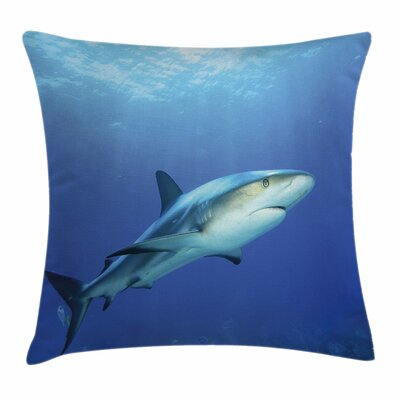 Shark Exotic Dreamy Ocean Life Square Pillow Cover Size: 18 x 18