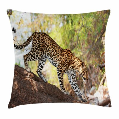 Zoo Leopard Tree Nature Reserve Square Pillow Cover Size: 18 x 18