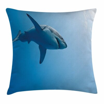 Shark Fish Pillow Cover Size: 16 x 16