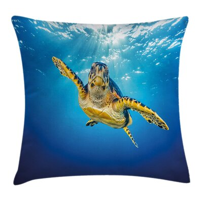 Turtle Waters Swimming Square Pillow Cover Size: 20 x 20