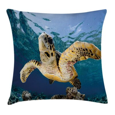 Hawksbill Sea Turtle Square Pillow Cover Size: 18 x 18