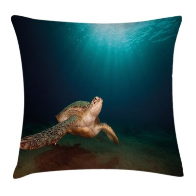 Turtle Sunbeam Square Pillow Cover Size: 18 x 18