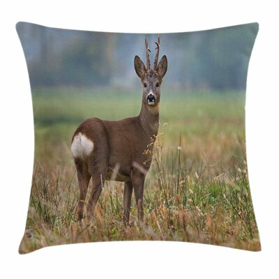 Deer Wildlife Square Pillow Cover Size: 18