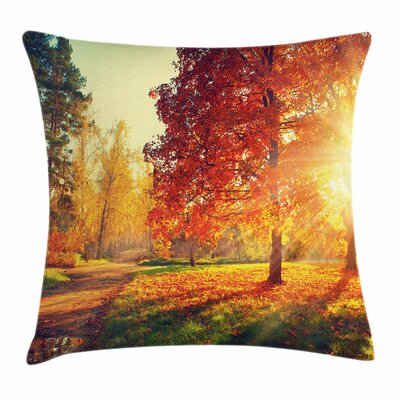 Fall Decor Misty Day in Forest Square Pillow Cover Size: 24 x 24