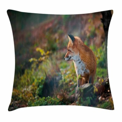 Fox Young Wild Fox in Woodland Square Pillow Cover Size: 24 x 24