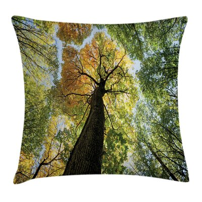 Tree Forest Autumn Growth Eco Pillow Cover Size: 18 x 18