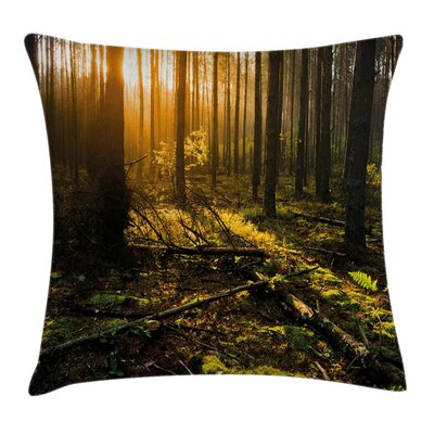 Forest Misty Morning Sun Rays Pillow Cover Size: 18 x 18