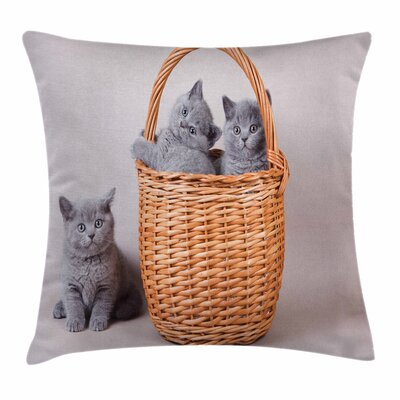 Kitten British Cats in Basket Square Pillow Cover Size: 18 x 18