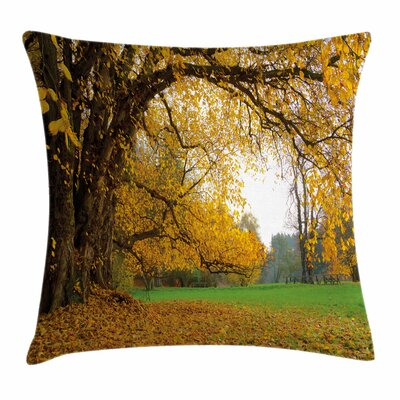 Fall Decor Big Ancient Oak Tree Square Pillow Cover Size: 24 x 24