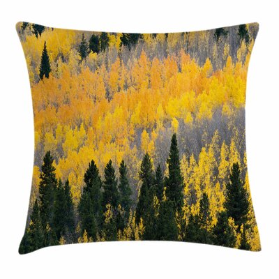 Fall Decor Colorful Aspen Trees Square Pillow Cover Size: 18 x 18