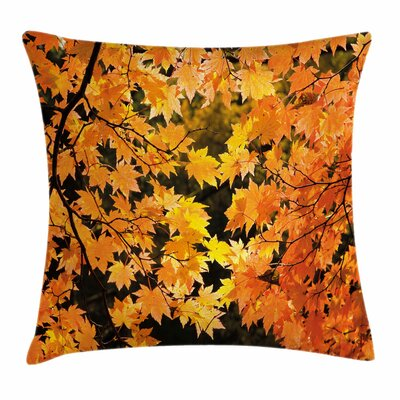 Fall Decor Vivid Autumn Leaves Square Pillow Cover Size: 18 x 18