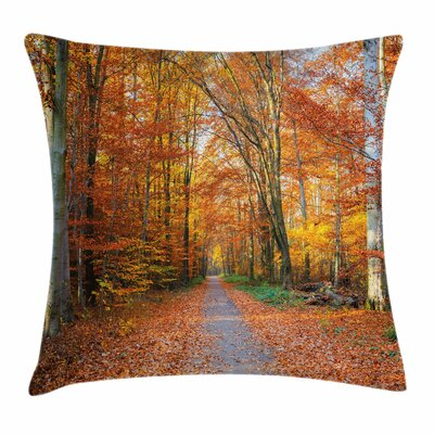 Fall Decor Vibrant Trees Path Square Pillow Cover Size: 24 x 24