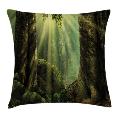 Forest Sunbeam Moss Tree Bodies Pillow Cover Size: 16 x 16