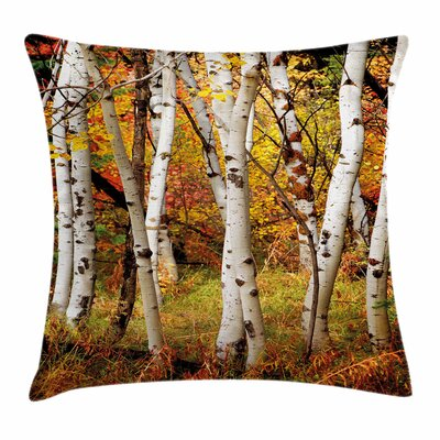 Fall Decor Birch Trees Square Pillow Cover Size: 16 x 16