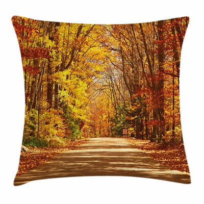 Fall Decor Scenic Outdoors Road Square Pillow Cover Size: 24 x 24