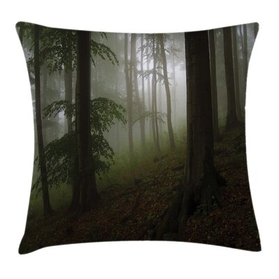 Forest Mysterious Woods Foggy Pillow Cover Size: 16 x 16