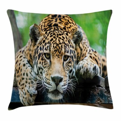 Jungle Jaguar Wildcat Feline Square Pillow Cover Size: 20 x 20