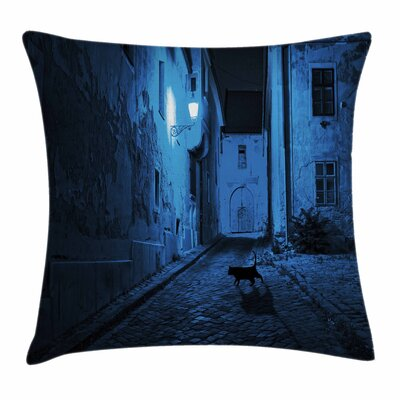 Urban Cat Deserted Street Square Pillow Cover Size: 24 x 24