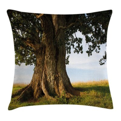 Tree Majestic Oak Estonia Rural Pillow Cover Size: 18 x 18