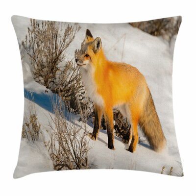 Fox Fox in Snowy Nature Square Pillow Cover Size: 16 x 16