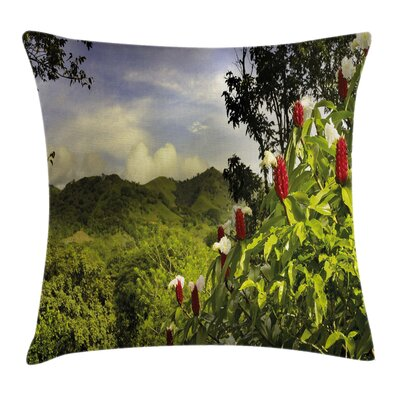 Forest Rural Scenery Costa Rica Pillow Cover Size: 16 x 16