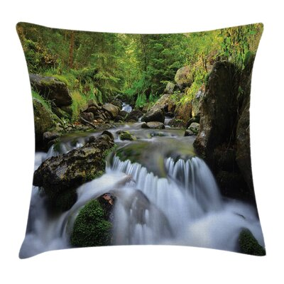 National Park Cascade Pillow Cover Size: 18 x 18