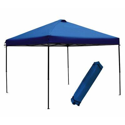 10 Ft. W x 10 Ft. D Canopy APFGA1010BL