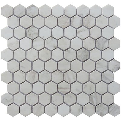 Hexagon 12 x 12.5 Carrara Natural Stone Blend Mosaic Tile in White