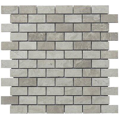 Mini Brick 1 x 2 Limestone Natural Stone Blend Mosaic Tile in Gray
