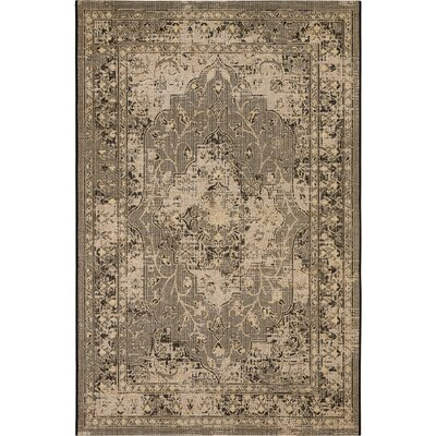 Censier Black/Cream Area Rug Rug Size: 4 x 6